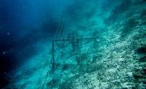 Genom att skicka en svag ström genom metallkonstruktioner under vattnet kan forskarna hjälpa korallerna att samla byggmaterial till sina skal. Processen leder till att mineral i havsvattnet kristalliserar på metallen. Bild: Linn Bergbrant.