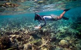 Nadia Alsgoff och de andra marinbiologerna på Maldiverna tillbringar mycket tid under vattenytan. De övervakar flera olika rev i närheten av ön Vabbinfaru. Foto: Linn Bergbrant.