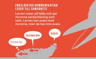 Bild: Johan Jarnestad.